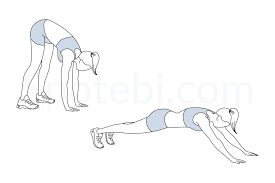 Illustration of the Inchworm exercise, strength training for skiing